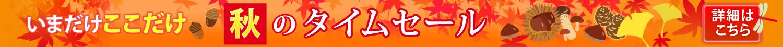 秋のタイムセール